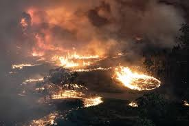 bush fires.jpeg