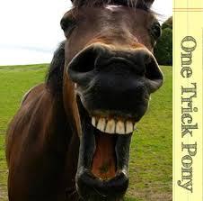 one trick pony 2