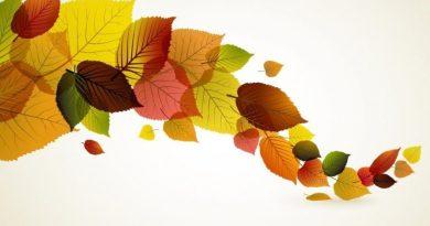 Orta Yaşlarda Mutlu, Güçlü Olmanın ve Genç Kalmanın 8 Yolu