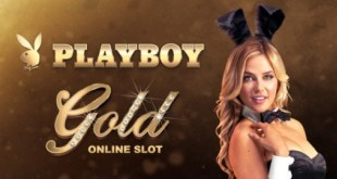 Youwin Playboy Gold
