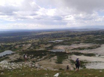 Brown Ridge, facing South.