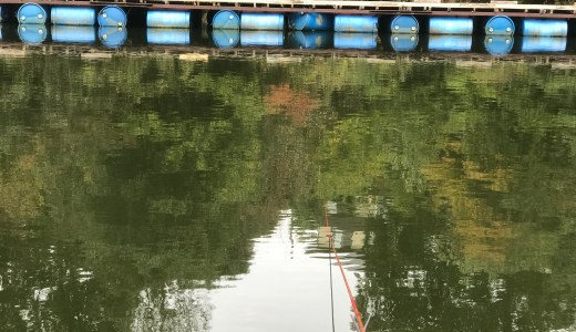 リベンジ 天神釣り池(2016.11.10)