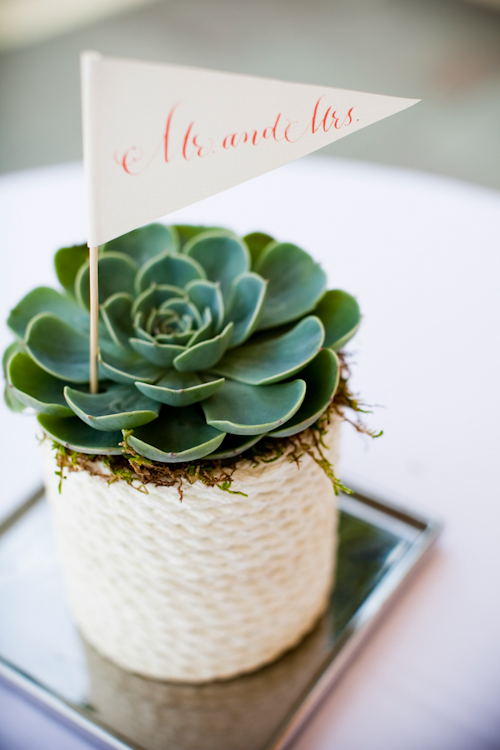 Photographe: Laurel McConnell's Photography Source: June Bug Wedding