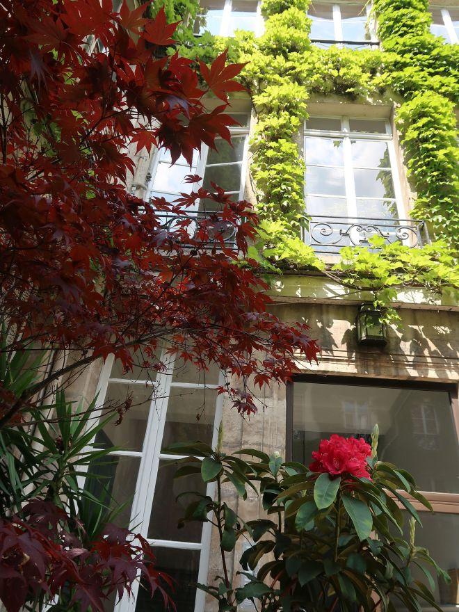 Bewachsene Häuserfassade Paris