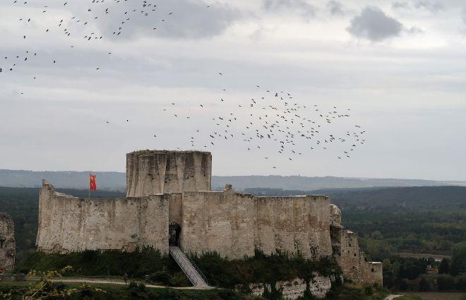 Chateau Gaillard_2483