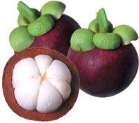 cara memilih buah manggis