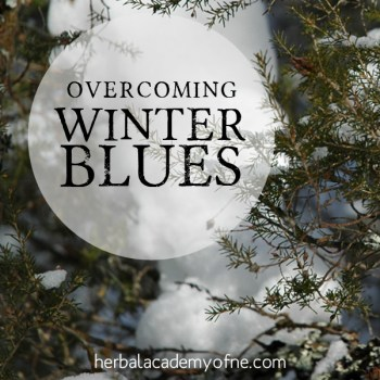 a solution to the winter blues