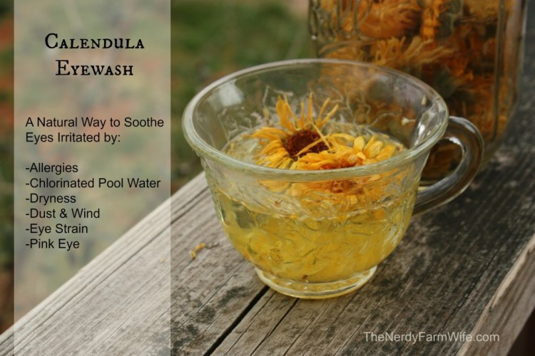 Calendula Natural Remedy Eye Wash
