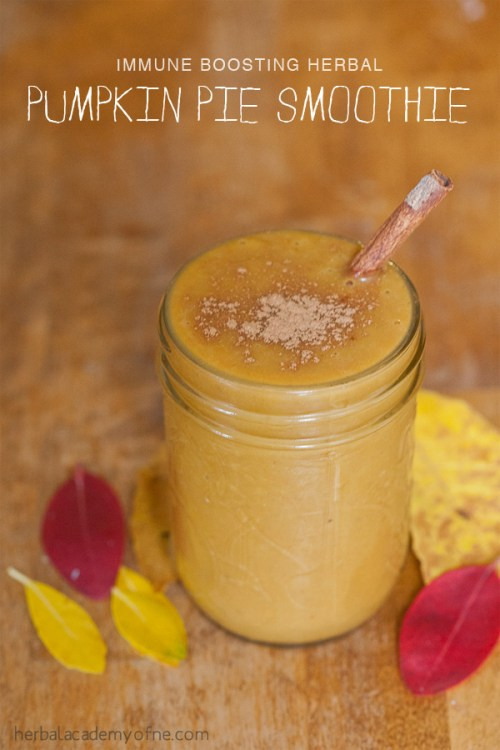 Immune Boosting Herbal Pumpkin Pie Smoothie - Real food by the Herbal Academy of New England