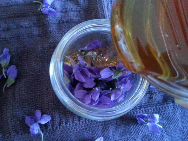 Violet The Family: How to use violet with your family