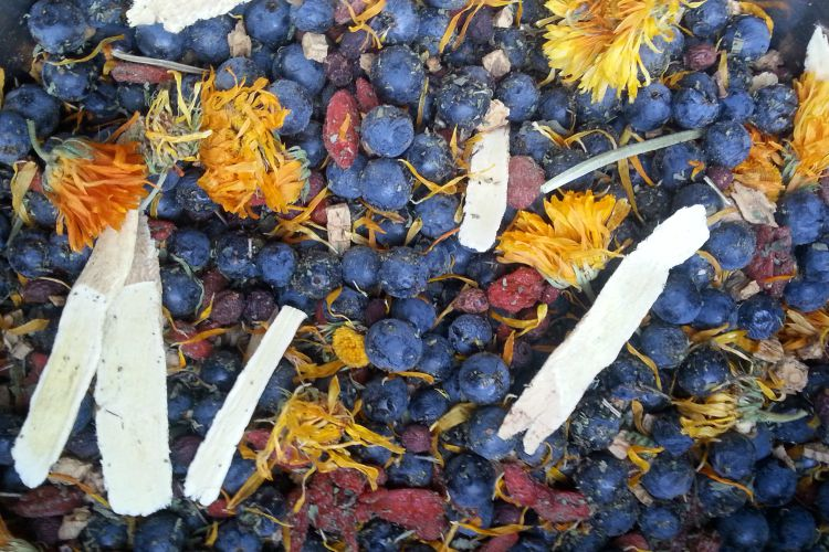 Benefits Of Grapes In A Tasty Herbal Syrup: Herbs To Choose
