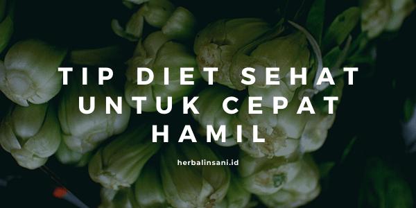 tip diet sehat untuk cepat hamil