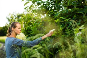 Complete Home Herbalism Course