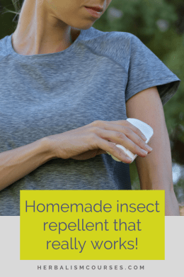 This herbal insect repellent is very effective, safe and easy to make yourself. There are only four ingredients that you simply mix together. #DIYInsectRepellent #HomemadeMosquitoRepellent #NaturalBugRepellent #HerbalBugRepellent #Herbalism #HerbalRemedies