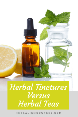 Herbal tinctures versus herbal tea is often a consideration when taking herbal medicine. The choice is easy when you understand the differences. #HerbalTinctures #HerbalTeas #HerbalMedicine #Herbalism #HerbalismCourses #OnlineHerbalCourse