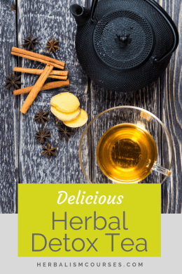 This herbal detox tea recipe includes blood cleansing herbs as well as medicinal plants for a liver cleanse. #HerbalDetox #DetoxTea #Dandelion #Burdock #Herbalism #HerbalMedicine #HerbalismCourse #OnlineHerbalCourses