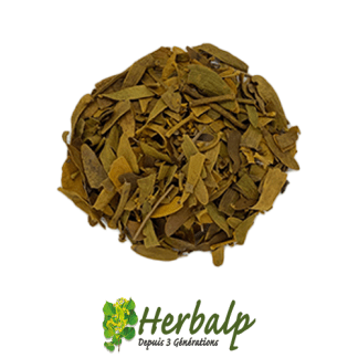infusion-gui-feuilles-herbalp