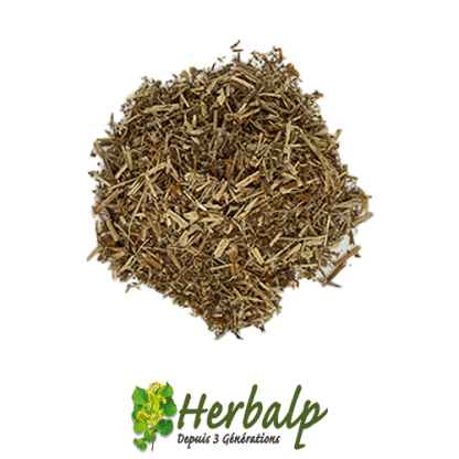 infusion-millepertuis-herbalp