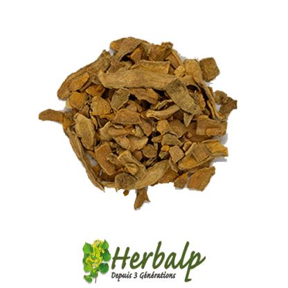 Curcuma-racine-herbalp