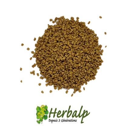 Fenugrec-entier-herbalp