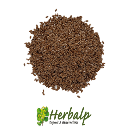 Graine-lin-herbalp