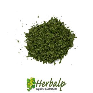 Persil-herbalp