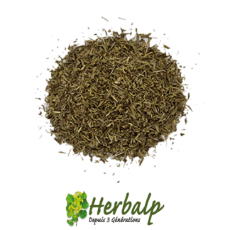 Sarriette-coupee-herbalp