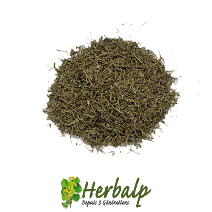 Serpolet-herbalp