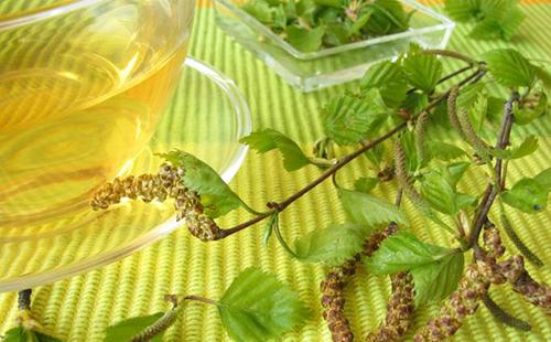 Polygemma 12 - Rinichi detoxifiere - Plantextrakt | Sanavita