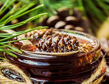 Варенье из сосновых шишек: лечебные свойства ...