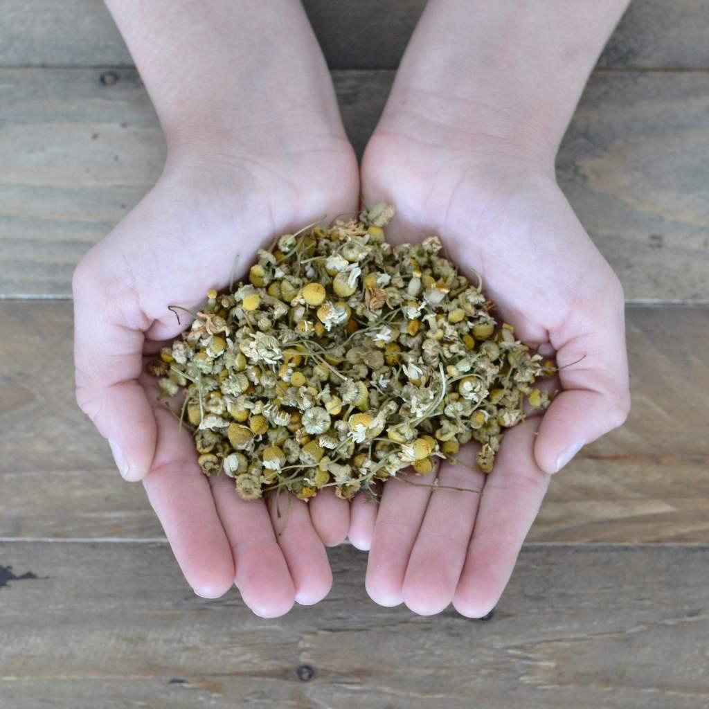 Herbal Spirits Chamomile In Hand