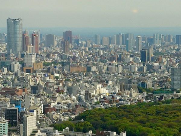 Yoyogi Park From Above