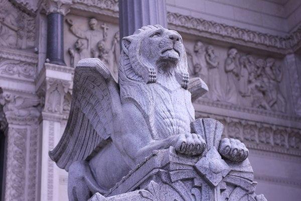 Lion at Lyon