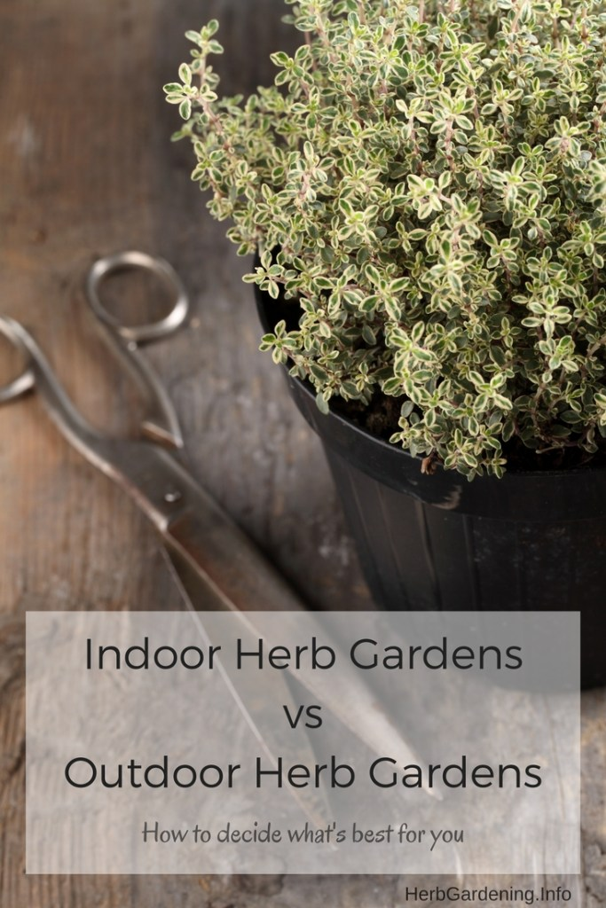 Indoor Herb Gardens vs Outdoor Herb Gardeners - How to Decide What's Right for You