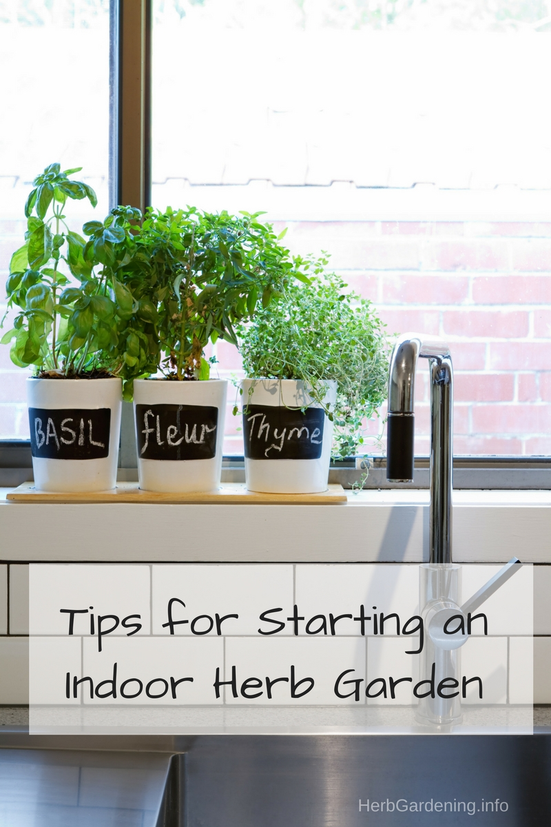 Tips For Starting An Indoor Herb Garden