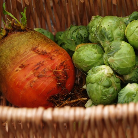 Apr 2012: orange beetroot and sprouts
