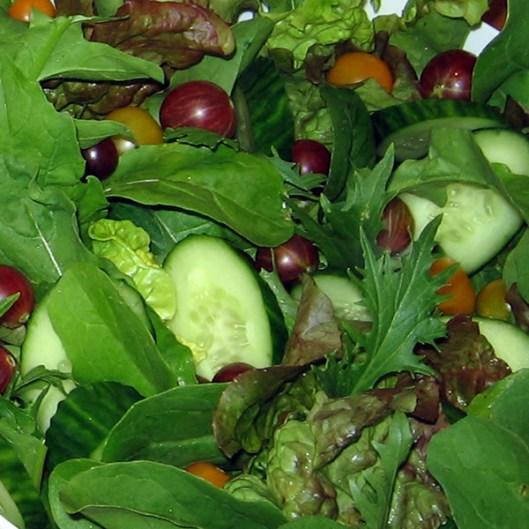 Bowl_of_salad