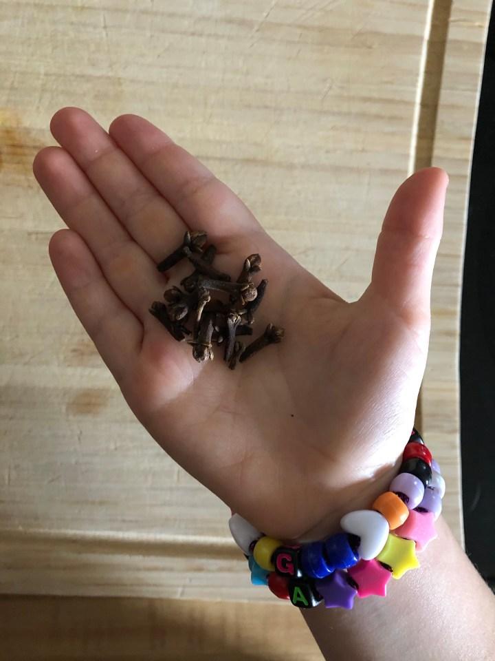 Cloves in Little Hands.