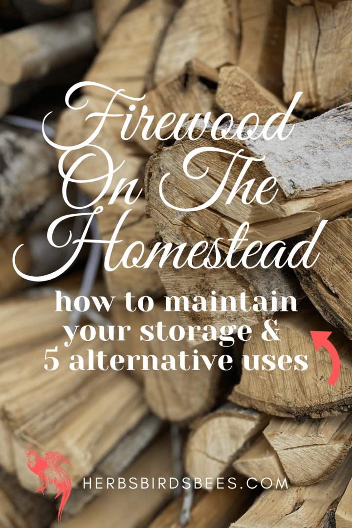 featured image firewood