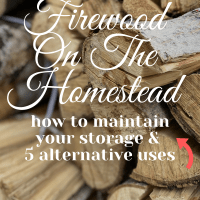 Firewood on the Homestead: How to Maintain Your Storage & 5 Alternative Uses