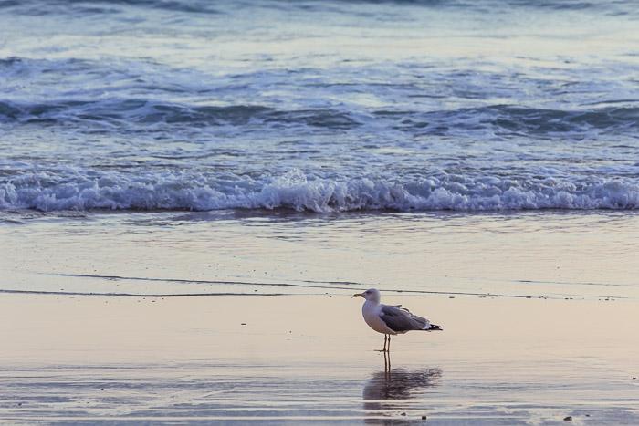 praia-011