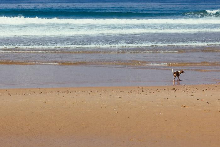 praia-022