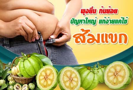 ส้มแขก ยาลดน้ำหนัก ลดไขมันหน้าท้อง สลายไขมัน