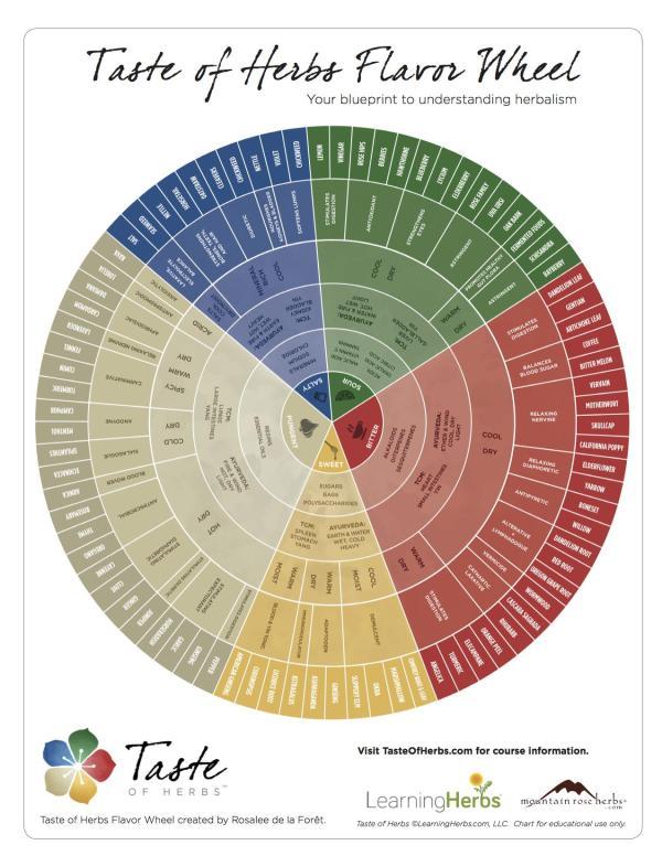 Taste-Of-Herbs-Flavor-Wheel