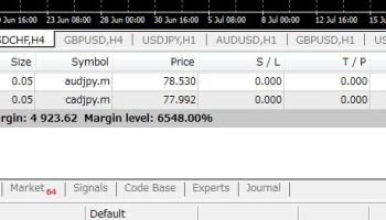 Negative trading equity in forex