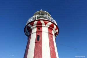 【Sydney Life】Nude Beach & Lighthouse at Watson Bay