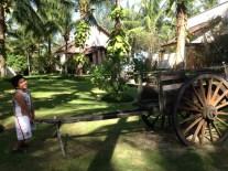 kuya garden