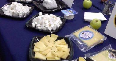 Já foram escolhidos os melhores queijos de Portugal