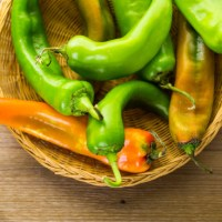 Fiery Capsicum Named 2016 Herb of the Year