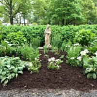 How To Create An All White Garden